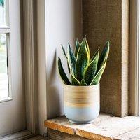 Bamboo grey planter 23cm