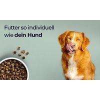 1 Monat Hundefutter, individuell auf deinen Hund abgestimmt, von Tails.com
