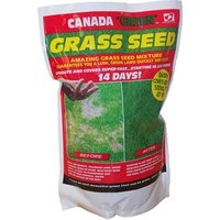 Up to 3kg Canada Green Grass Seeds