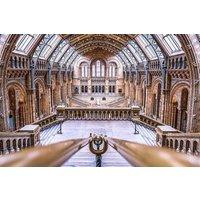 Natural History Museum Treasure Hunt