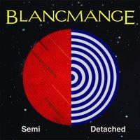 Semi Detached LP
