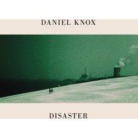 Disaster Dove Grey LP