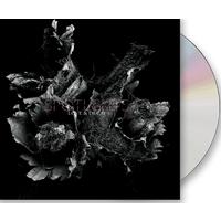 Love & Decay CD