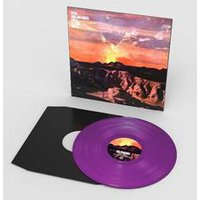 If Love Is The Law 12-Inch Purple (Limited Edition) 12 Inch