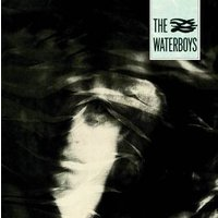 The Waterboys Heavyweight LP