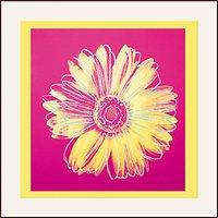 Warhol - Daisy 1982, Yellow on Pink