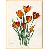 Royal Horticultural Society, John Paul Wellington Furse - T. whittallii, T. hageri