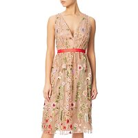 Adrianna Papell Embroidered Tulle Fit And Flare Prom Dress, Nude/Multi
