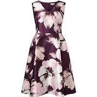 Studio 8 Frankie Floral Print Dress, Multi
