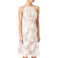 Adrianna Papell Halterneck Fit And Flare Dress, Peach/Ivory