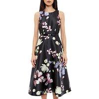 Ted Baker Rosa Kensington Floral Midi Dress, Black