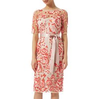 Adrianna Papell Two-Tone Embroidery Dress, Blush/Rouge