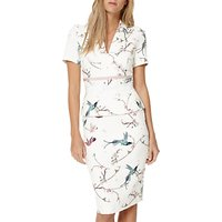 Damsel in a dress Japanese Bird Print Dress, Multi