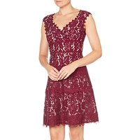Adrianna Papell Cynthia Lace Fit and Flare Dress, Black Cherry/Blush
