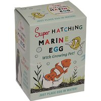 Rex International Super Hatching Marine Egg
