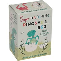 Rex International Hatch Your Own Dino Egg