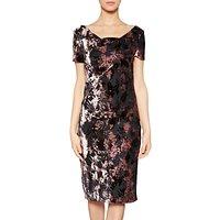 Gina Bacconi Sabrina Floral Velvet Dress, Black/ Plum Frost