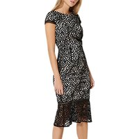Damsel in a dress Caspian Lace Dress, Black/Blush