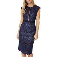 Damsel in a Dress Maneki Lace Dress, Navy