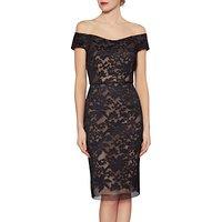 Gina Bacconi Felicity Embroidered Mesh Dress, Beige