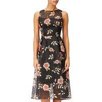 Adrianna Papell Flare Dress, Black/Multi