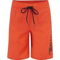 Animal Boys Tannar Board Shorts, Red