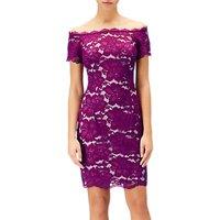 Adrianna Papell Sheath Bardot Petite Lace Dress, Wildberry/Blush