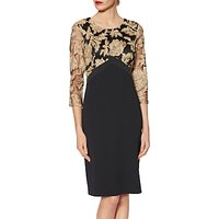 Gina Bacconi Renatta Embroidered Bodice Dress, Black/Gold