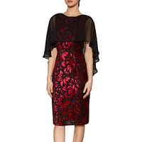 Gina Bacconi Lottie Floral Velvet Cape Dress, Black/Ruby