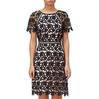 Adrianna Papell Ava Lace Trimmed A-line Dress, Black/Rose Gold