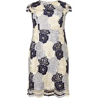 Studio 8 Megan Lace Dress, Blue/Ivory