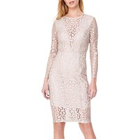 Damsel in a Dress Eira Animal Lace Dress, Champagne