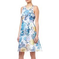 Adrianna Papell Floral Printed Ribbed Organza Dress, Blue/Multi