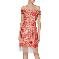 Gina Bacconi Kira Embrodered Mesh Dress, Tropical Red