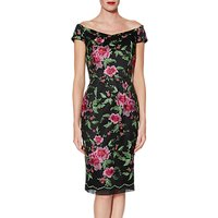 Gina Bacconi Avril Floral Embroidery Dress, Black/Pink