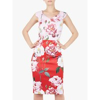 Ted Baker Saafi Iguazu Print Pencil Dress, Red/Multi
