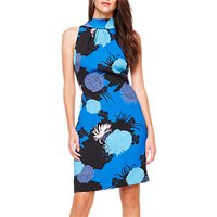 Damsel in a Dress Estie Floral Print Dress, Blue