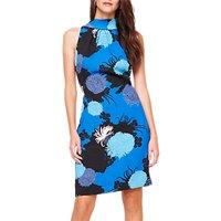 Damsel in a Dress Estie Floral Print Dress, Blue