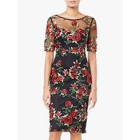 Adrianna Papell Falling Roses Tulle Overlay Dress, Black/Multi