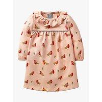 Mini Boden Baby Robin Print Dress, Provence Dusty Pink