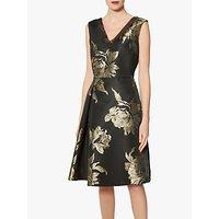 shop for Gina Bacconi Jackie Dress, Black/Gold at Shopo