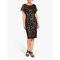 Image of Adrianna Papell Floral Velvet Dress, Black/Rose Gold