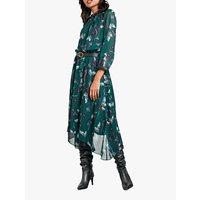hush Phoenix Metallic Stripe Dress, Nouveau Floral Green