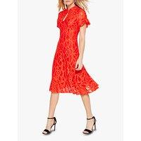 shop for Damsel in a Dress Lulu Lace Hem Dress, Red at Shopo
