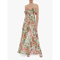 Gina Bacconi Narelle Floral Chiffon Maxi Dress, Multi