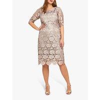Studio 8 Rosalind Lace Dress, Mid Pink