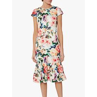 shop for Gina Bacconi Seanna Floral Peplum Dress, Poppy Red/Multi at Shopo