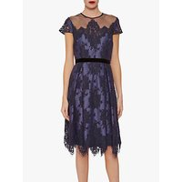 shop for Gina Bacconi Wendi Lace Dress, Navy at Shopo