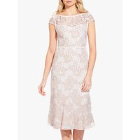 Adrianna Papell Emily Lace Dress, Ivory