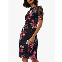Monsoon Eloise Print Mesh Dress, Black